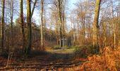 Trail Walk SAINT-JEAN-AUX-BOIS - en forêt de Compiègne_33_12_2019_les Tournantes de l'étang Saint-Jean et des Prés Saint-Jean - Photo 179
