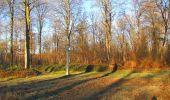 Trail Walk SAINT-JEAN-AUX-BOIS - en forêt de Compiègne_33_12_2019_les Tournantes de l'étang Saint-Jean et des Prés Saint-Jean - Photo 185