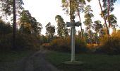 Randonnée Marche SAINT-JEAN-AUX-BOIS - en forêt de Compiègne_19_le Puits d'Antin_les Mares St-Louis_La Muette - Photo 17