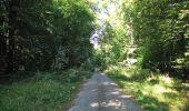 Trail Walk DAMPLEUX - en forêt de Retz_80_sur la Route Tortue et la Route Droite - Photo 170