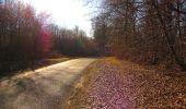 Trail On foot VIEUX-MOULIN - en forêt de Compiègne_23_la Grotte des Ramoneurs_le Mont Berny - Photo 96