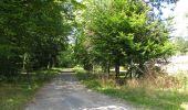 Randonnée Marche SAINT-JEAN-AUX-BOIS - en forêt de Compiègne_2_ruines gallo-romaines de Champlieu_les Petits Monts - Photo 54