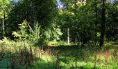 Trail Walk DAMPLEUX - en forêt de Retz_80_sur la Route Tortue et la Route Droite - Photo 209