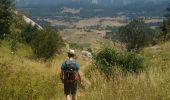Trail Walk VASSIEUX-EN-VERCORS - crêtes de gageure col de la chaux - Photo 4
