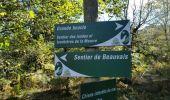 Randonnée Marche SAINT-PIERRE-BELLEVUE - cent pas beauvais - Photo 4