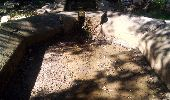 Randonnée Marche FERRIERES-LES-BOIS - Ferrières les bois - Photo 5