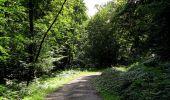 Randonnée Marche HARAMONT - en forêt de Retz_79_08_2019_vers Taillefontaine et Retheuil par les lisières - Photo 57