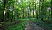Randonnée Marche HARAMONT - en forêt de Retz_79_08_2019_vers Taillefontaine et Retheuil par les lisières - Photo 4