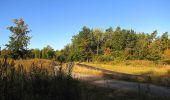Trail Walk DAMPLEUX - en forêt de Retz_80_sur la Route Tortue et la Route Droite - Photo 80
