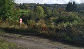 Randonnée Marche Stavelot - Ca Marche Francorchamps 10/10/2019 - Photo 9