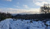 Trail Walk Sainte-Ode - rando lavacherie 29/12/2020 - Photo 26