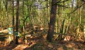 Randonnée Marche LONGPONT - en forêt de Retz_77_Longpont_Puiseux en Retz_AR - Photo 27