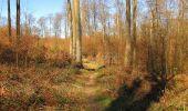 Randonnée A pied VILLERS-COTTERETS - le GR11A  dans la Forêt de Retz  - Photo 68