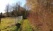 Trail On foot VIEUX-MOULIN - en forêt de Compiègne_23_la Grotte des Ramoneurs_le Mont Berny - Photo 46