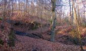 Trail Walk PIERREFONDS - en forêt de Compiègne_24_Tournantes sur le Voliard et sur la Fortelle_chaussée Brunehaut - Photo 104