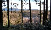 Trail Walk ECROMAGNY - 16-02-20 Ecromagny : circuit Epoissets + étangs de la Chaussée - Photo 9