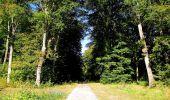 Trail Walk DAMPLEUX - en forêt de Retz_80_sur la Route Tortue et la Route Droite - Photo 158