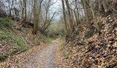 Randonnée Marche Tervuren - Tervuren 22 km - Photo 2