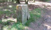 Randonnée V.T.T. WISEMBACH - Col de Sainte Marie Bagenelles AR - Photo 3