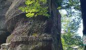 Trail Walk ALLARMONT - 2019-06-08 Marche Allarmont et ses rochers - Photo 13