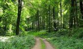 Randonnée Marche HARAMONT - en forêt de Retz_79_08_2019_vers Taillefontaine et Retheuil par les lisières - Photo 70