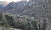 Trail Walk METZERAL - le lac Fichboedlé - Photo 3