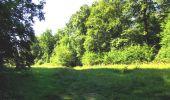 Randonnée A pied VILLERS-COTTERETS - le GR11A  dans la Forêt de Retz  - Photo 41