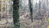 Trail Walk PONTOISE - GRP CV-IDF 12 - Photo 2
