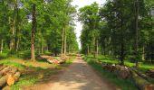 Randonnée Marche COYOLLES - en forêt de Retz_78_les rayons du Rond Capitaine - Photo 33