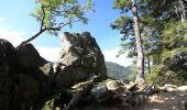 Trail Walk LE VALTIN - sentiers des roches   - Photo 2