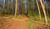 Randonnée Marche LONGPONT - en forêt de Retz_77_Longpont_Puiseux en Retz_AR - Photo 132