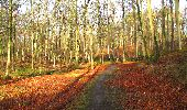 Randonnée A pied VILLERS-COTTERETS - le GR11A  dans la Forêt de Retz  - Photo 33
