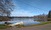 Trail Walk ECROMAGNY - 16-02-20 Ecromagny : circuit Epoissets + étangs de la Chaussée - Photo 3