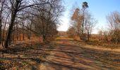 Trail Walk RETHEUIL - en forêt de Retz_76_dans les forêts de Retz et de Compiègne - Photo 135