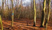 Trail On foot VIEUX-MOULIN - en forêt de Compiègne_23_la Grotte des Ramoneurs_le Mont Berny - Photo 104