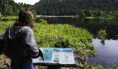 Trail Walk LA BRESSE - Lac de Lispach - Photo 8