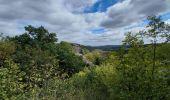 Randonnée Marche Viroinval - Nismes - Photo 6