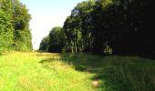 Randonnée A pied VILLERS-COTTERETS - le GR11A  dans la Forêt de Retz  - Photo 43