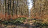 Trail Walk PIERREFONDS - en forêt de Compiègne_24_Tournantes sur le Voliard et sur la Fortelle_chaussée Brunehaut - Photo 79