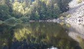 Trail Walk METZERAL - Steinabruck - Le Hohneck et ses 3 lacs Fischboedle, Altenweiher et Schiessrothried - Photo 58