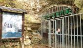 Trail Walk Viroinval - De Nismes à Petigny par le Tienne du Lion - Photo 5