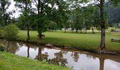 Randonnée Marche LELEX - lelex mijou Colomby de gex - Photo 3