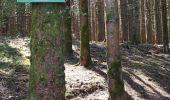 Randonnée Marche Libin - REDU ... vallée de la Lesse par le pont des Barbouillons. - Photo 3