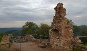 Randonnée Marche PHILIPPSBOURG - chateaux falckenstein - Waldeck - Photo 5