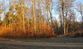 Trail Walk SAINT-JEAN-AUX-BOIS - en forêt de Compiègne_33_12_2019_les Tournantes de l'étang Saint-Jean et des Prés Saint-Jean - Photo 195