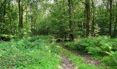 Randonnée Marche HARAMONT - en forêt de Retz_79_08_2019_vers Taillefontaine et Retheuil par les lisières - Photo 54
