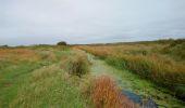 Trail Walk PLOMEUR - Pointe de la Torche - Pointe de Penmarc'h Kérity boucle GR34 - 18.2km 85m 5h00 (35mn) - 2019 09 11 - Photo 27
