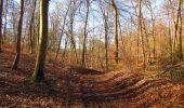 Trail Walk PIERREFONDS - en forêt de Compiègne_24_Tournantes sur le Voliard et sur la Fortelle_chaussée Brunehaut - Photo 35
