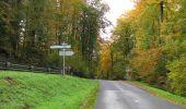 Randonnée Marche SAINT-JEAN-AUX-BOIS - en forêt de Compiègne_32_11_2019_les Tournantes de la Muette et sous la Tête Saint-Jean - Photo 155