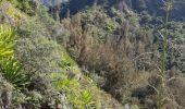 Randonnée Marche CILAOS - Cileos cirque - Photo 1
